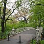 Centralni park - New York
