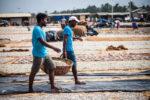 Negombo, The Fishing town – Sri Lanka