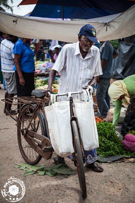 Shrilanka-Negombo-4738