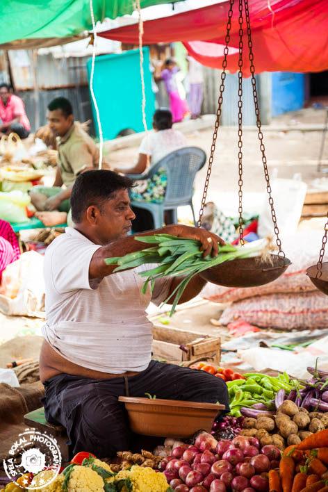 Shrilanka-Negombo-4752