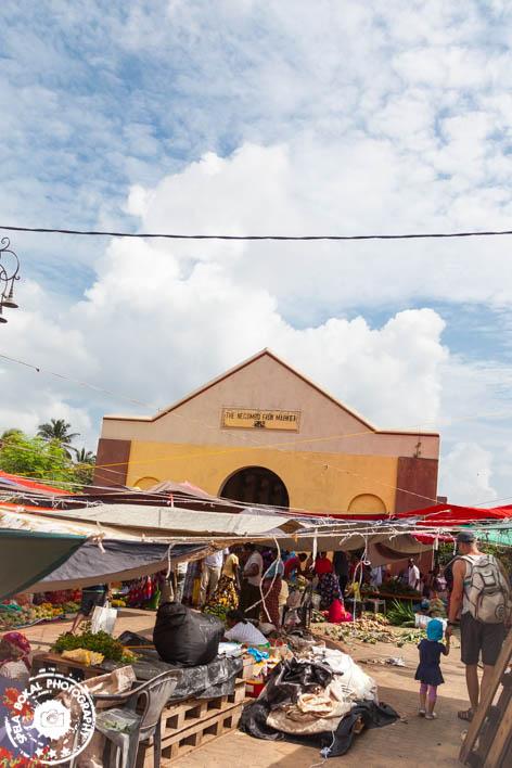 Negombo - ribja tržnica