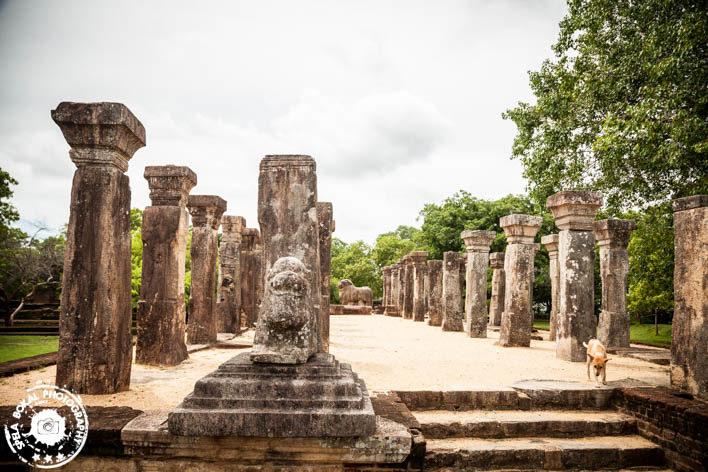 Polonnaruwa - kraljevsko starodavno mesto iz 11.stoletja.