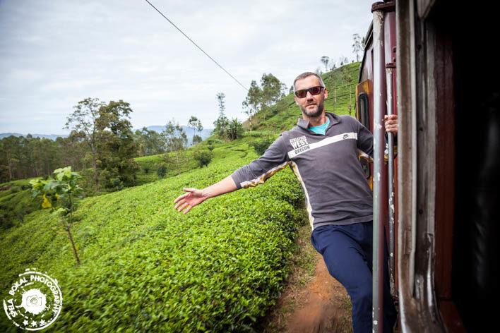 Vozi me vlak med plantažami čaja....