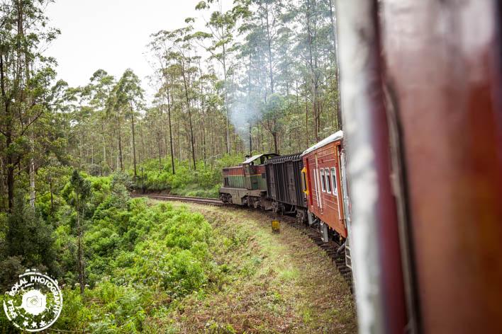 Razgledni vlak čez osrednjo Sri Lanko