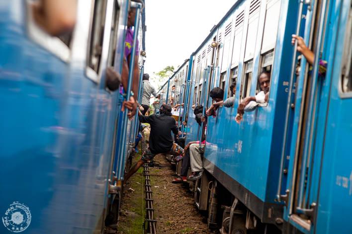 Ker je proga enotirna je več postojank in postajališč, kjer se vlaka lahko srečata.