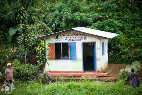 Hišica kjer se odvija tehtanje in pregled kvalitete čaja