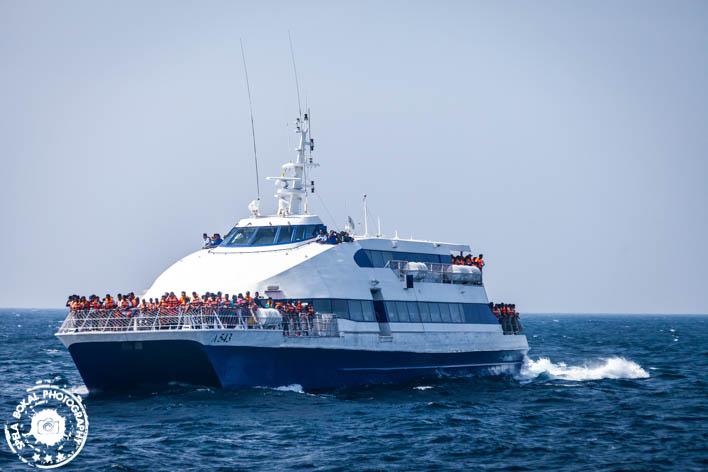 SriLanka-Mirissa-Blue-whales-7126