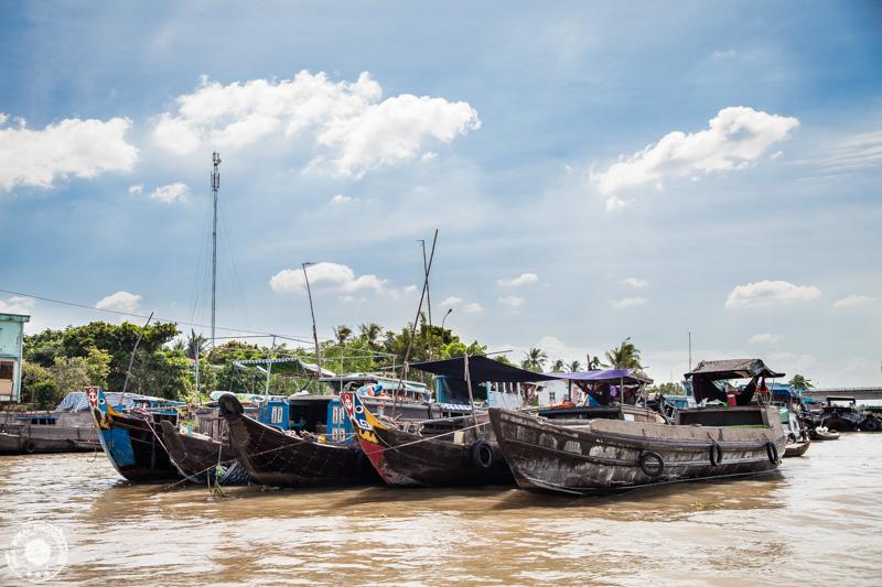 Mekong delta-Vietnam-FSB-9243