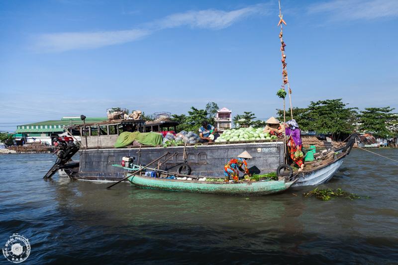 Mekong delta-Vietnam-FSB-9564