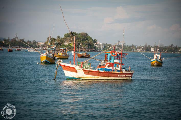 SriLanka-Valigama-foto-Spela-Bokal-7067