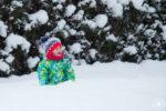 Sneg – Zimsko veselje